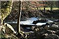 SX4768 : Bere Ferrers: Denham Bridge Mill weir by Martin Bodman