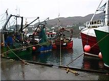 NR8668 : Fishing boats Tarbert Harbour by Johnny Durnan