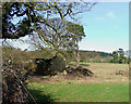 SO5188 : Old Barns and Fields near Munslow, Shropshire by Roger  Kidd