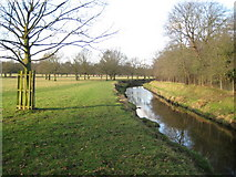 TQ2172 : Richmond Park: Beverley Brook by Nigel Cox
