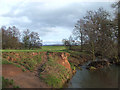 SO5184 : River Corve near Lawton, Shropshire by Roger  Kidd