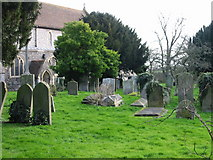 TR3154 : The churchyard at St Mary's, Eastry by Nick Smith