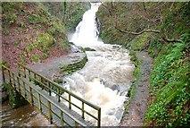 J3996 : Glenoe waterfall (26) by Albert Bridge