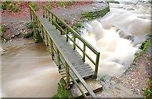 J3996 : Footbridge, Glenoe glen (6) by Albert Bridge