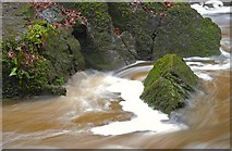 J3996 : River, Glenoe glen (6) by Albert Bridge