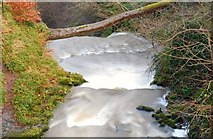 J3996 : Above Glenoe waterfall (3) by Albert Bridge