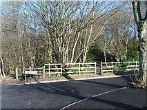 SO9596 : Peascroft Lane by Gordon Griffiths