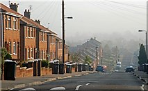 J3773 : The Orangefield Road, Belfast by Albert Bridge