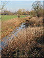 SO7723 : Stream running down to meet the River Leadon by Pauline E
