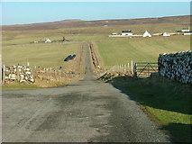 NG2261 : Road at Trumpan by Dave Fergusson