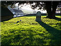 ST6717 : Goathill Churchyard by Nigel Mykura