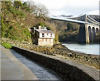 SH5571 : Menai Bridge by David  C Williams