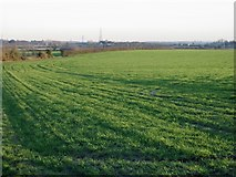 TR3156 : View across the fields from Church Street, Woodnesborough by Nick Smith