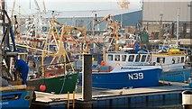 J1417 : The Town Dock, Warrenpoint (2) by Albert Bridge