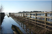 TL5392 : Fenced gateway to the Ouse Washes by Bob Jones