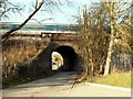 TQ5591 : Railway bridge viewed from Harold Court Woods by Robert Edwards