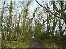SX0066 : Rough track and footpath by Jonathan Billinger