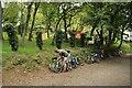 SX0367 : Camel Trail Tea Gardens by Katy Walters