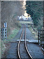 SN6578 : Vale of Rheidol Railway by John Lucas
