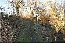 SU5985 : Hidden by rubbish by Bill Nicholls