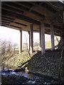 NY6001 : Under the Bridge by Michael Graham