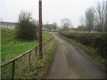 ST6961 : Looking N along Mill Lane by Nick Smith
