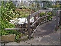 SE0823 : Water Garden & Bridge - Manor Heath Park, Halifax by Betty Longbottom