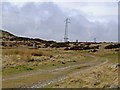 SH7171 : Standing stones and pylons by Ian Greig