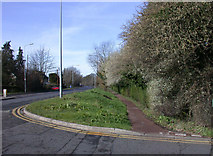 TL4259 : Signs of spring on Madingley Road by Keith Edkins
