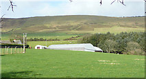 T1067 : Farm at Annagh Hill by Jonathan Billinger