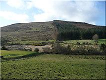 T1068 : Annagh Hill; half forest, half moorland by Jonathan Billinger