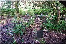 SH5837 : Mynwent y Cŵn Portmeirion Dogs' Cemetery by Alan Fryer