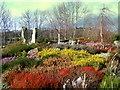 NJ3458 : The Famous Fochaberians Garden by Ann Harrison