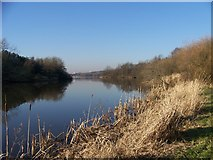 NS7357 : A quiet stretch of Strathclyde Loch by Elliott Simpson