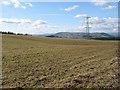 SO4818 : Farmland near Pembridge Castle by Pauline E