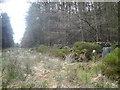 SK3062 : Farley Moor by Alan Heardman
