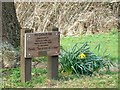 SU1782 : The Council Oak name plaque, Coate Water, Swindon by Brian Robert Marshall