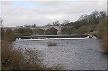 SE4843 : River Wharfe, Weir and Viaduct by Betty Longbottom