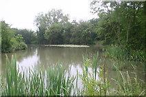 SP6517 : New Pond Ludgershall by Shaun Ferguson