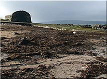 J4482 : Shore near Helen's Bay [1] by Rossographer