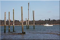 TM2038 : Mooring posts in the River Orwell by Bob Jones