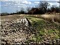 TF3364 : Kirkby Hill near Old Bolingbroke by Dave Hitchborne