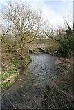 TL4352 : River Cam or Granta by Bob Jones