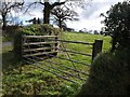 SX2687 : Gate near Trebeath by Derek Harper