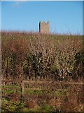 ST6834 : The Dovecote, Bruton from Godminster Lane by Peter Guest