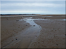NT6378 : Hedderwick Sands by Lisa Jarvis