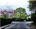 SE7250 : Main Street Storking Lane Junction by Keith Laverack