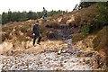 N2601 : Boggy trail by kevin higgins