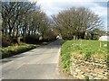 SX1388 : Road past Hendra by Derek Harper