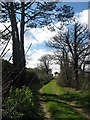 O1865 : Lane to Lowther Lodge, Knocknagin by Kieran Campbell